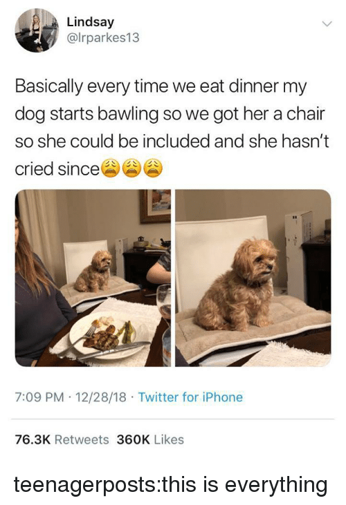 Iphone, Target, and Tumblr: Lindsay  @lrparkes13  Basically every time we eat dinner my  dog starts bawling so we got her a chair  so she could be included and she hasn't  cried since  7:09 PM 12/28/18 Twitter for iPhone  76.3K Retweets 360K Likes teenagerposts:this is everything