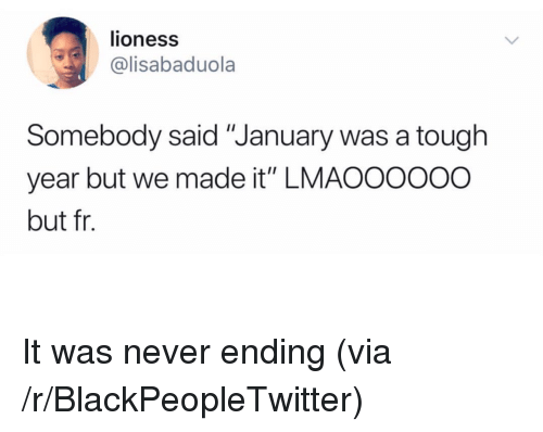 "lioness: lioness  @lisabaduola  Somebody said ""January was a tough  year but we made it"" LMAOOOooo  but fr. <p>It was never ending (via /r/BlackPeopleTwitter)</p>"