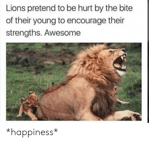 Lions: Lions pretend to be hurt by the bite  of their young to encourage their  strengths. Awesome *happiness*