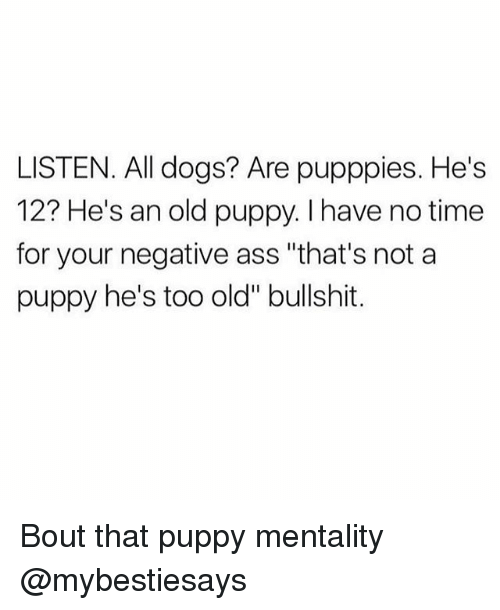 """Ass, Dogs, and Puppy: LISTEN. All dogs? Are pupppies. He's  12? He's an old puppy. I have no time  for your negative ass """"that's not a  puppy he's too old"""" bullshit. Bout that puppy mentality @mybestiesays"""