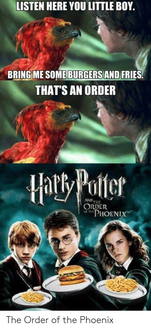 Burgers: LISTEN HERE YOU LITTLE BOY.  BRING ME SOME BURGERS AND FRIES  THAT'S AN ORDER  Hatty Potter  AND THE  ORDER  PHOENIX The Order of the Phoenix