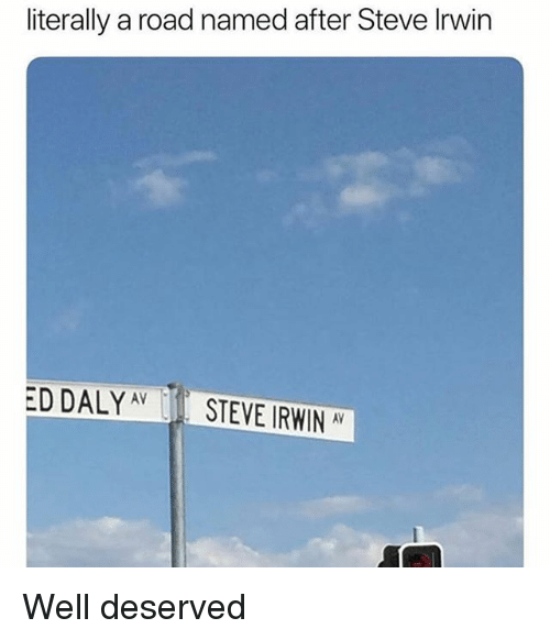 Memes, Steve Irwin, and 🤖: literally a road named after Steve Irwin  ED DALYAVSTEVE IRWIN AV Well deserved