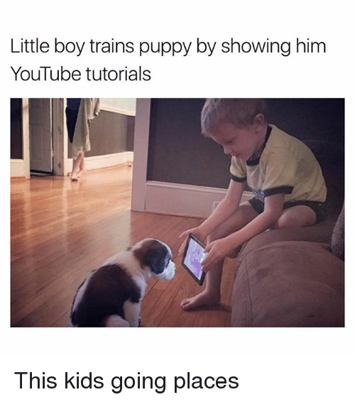 This Kids Going Places: Little boy trains puppy by showing him  YouTube tutorials This kids going places