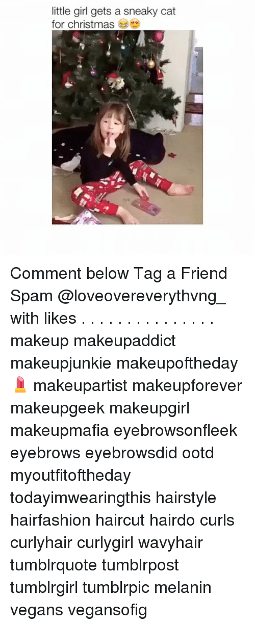 Haircut, Makeup, and Memes: little girl gets a sneaky cat  for christmas Comment below Tag a Friend Spam @loveovereverythvng_ with likes . . . . . . . . . . . . . . . makeup makeupaddict makeupjunkie makeupoftheday💄 makeupartist makeupforever makeupgeek makeupgirl makeupmafia eyebrowsonfleek eyebrows eyebrowsdid ootd myoutfitoftheday todayimwearingthis hairstyle hairfashion haircut hairdo curls curlyhair curlygirl wavyhair tumblrquote tumblrpost tumblrgirl tumblrpic melanin vegans vegansofig