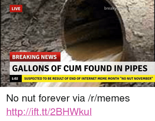 "Cum, Internet, and Meme: LIVE  br  eaKvOurOwnnews.com  BREAKING NEWS  GALLONS OF CUM FOUND IN PIPES  1:02  SUSPECTED TO BE RESULT OF END OF INTERNET MEME MONTH ""NO NUT NOVEMBER"" <p>No nut forever via /r/memes <a href=""http://ift.tt/2BHWkuI"">http://ift.tt/2BHWkuI</a></p>"