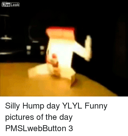 Funny, Hump Day, and Live: Live Leak <p>Silly Hump day YLYL  Funny pictures of the day  PMSLwebButton 3 </p>