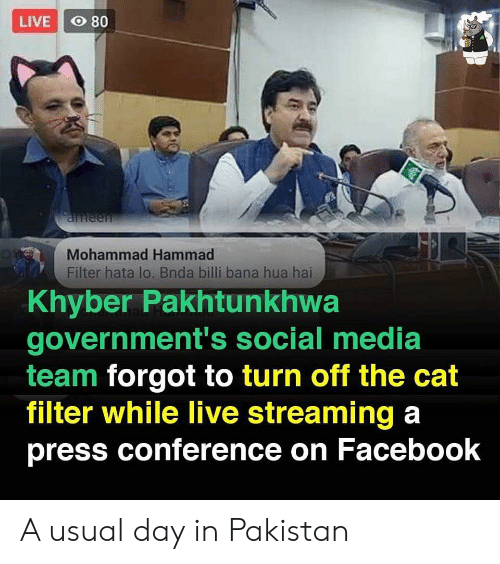 Conference: LIVE O 80  aneen  Mohammad Hammad  Filter hata lo. Bnda billi bana hua hai  Khyber Pakhtunkhwa  government's social media  team forgot to turn off the cat  filter while live streaming a  press conference on Facebook A usual day in Pakistan