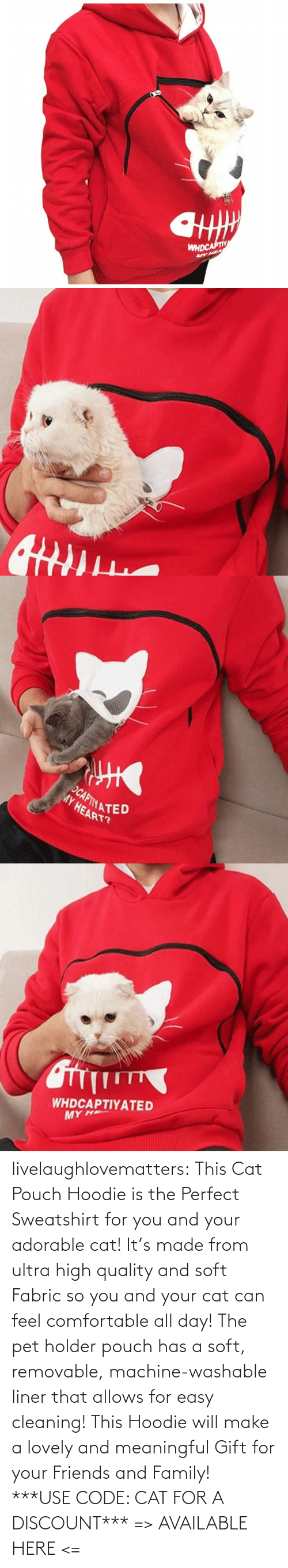 easy: livelaughlovematters: This Cat Pouch Hoodie is the Perfect Sweatshirt for you and your adorable cat! It's made from ultra high quality and soft Fabric so you and your cat can feel comfortable all day! The pet holder pouch has a soft, removable, machine-washable liner that allows for easy cleaning! This Hoodie will make a lovely and meaningful Gift for your Friends and Family!  ***USE CODE: CAT FOR A DISCOUNT*** => AVAILABLE HERE <=