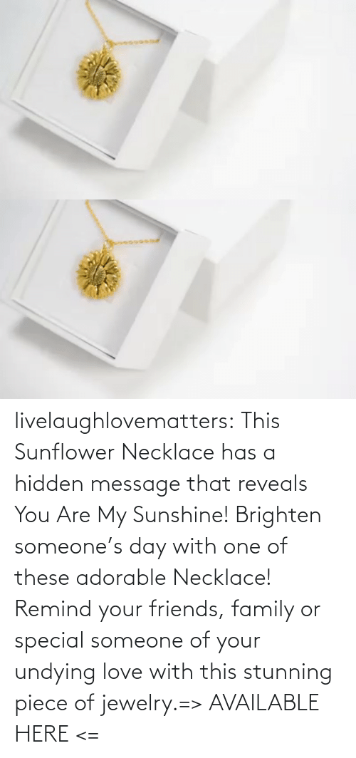 You Are: livelaughlovematters:  This Sunflower Necklace has a hidden message that reveals You Are My Sunshine! Brighten someone's day with one of these adorable Necklace! Remind your friends, family or special someone of your undying love with this stunning piece of jewelry.=> AVAILABLE HERE <=
