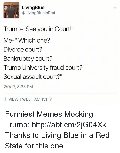 "Blue In: Living Blue  @Living BlueinRed  Trump-""See you in Court!""  Me-"" Which one?  Divorce court?  Bankruptcy court?  Trump University fraud court?  Sexual assault court?""  2/9/17, 8:33 PM  III VIEW TWEET ACTIVITY Funniest Memes Mocking Trump: http://abt.cm/2jG04Xk  Thanks to Living Blue in a Red State for this one"