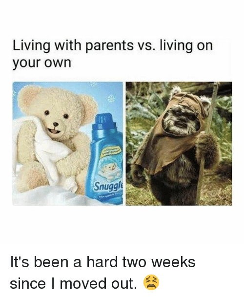 Memes, Parents, and Living: Living with parents vs. living on  your own  Snugge It's been a hard two weeks since I moved out. 😫