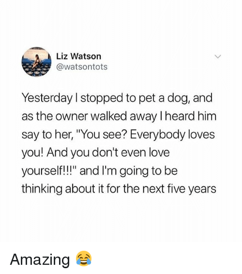 "Love, Memes, and Amazing: Liz Watson  @watsontots  Yesterday I stopped to pet a dog, and  as the owner walked away l heard him  say to her, ""You see? Everybody loves  you! And you don't even love  yoursef!!"" and I'm going to be  thinking about it for the next five years Amazing 😂"