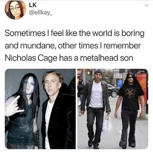 nicholas cage: LK  @ellkay  Sometimes I feel like the world is boring  and mundane, other times I remember  Nicholas Cage has a metalhead son