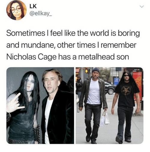 nicholas cage: LK  @ellkay  Sometimes l feel like the world is boring  and mundane, other times I remember  Nicholas Cage has a metalhead son