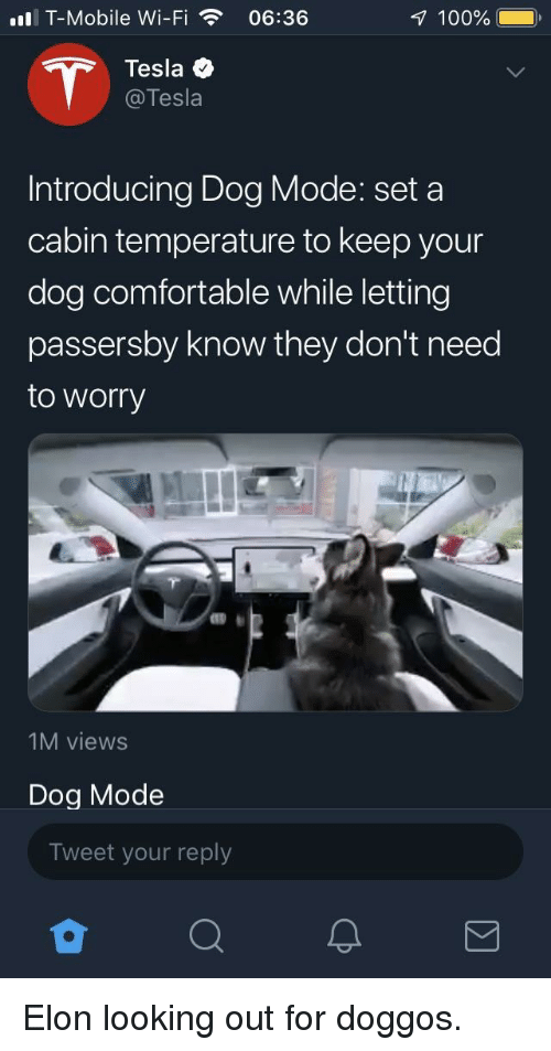 Anaconda, Comfortable, and T-Mobile: ll T-Mobile Wi-Fi06:36  100%  Tesla  @Tesla  Introducing Dog Mode: set a  cabin temperature to keep your  dog comfortable while letting  passersby know they don't need  to worry  1M views  Dog Mode  Tweet your reply Elon looking out for doggos.