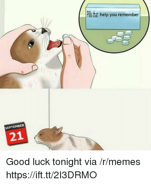 Memes, Good, and Help: ll that help you remember  c/  SEPTEMBER  21 Good luck tonight via /r/memes https://ift.tt/2I3DRMO