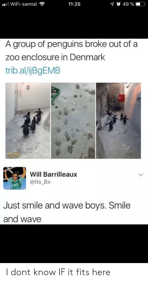 Penguins: ll WiFi-samtal  O 49 %  11:25  A group of penguins broke out of a  zoo enclosure in Denmark  trib.al/ijBgEMB  Will Barrilleaux  @lts_Bx  Just smile and wave boys. Smile  and wave I dont know IF it fits here