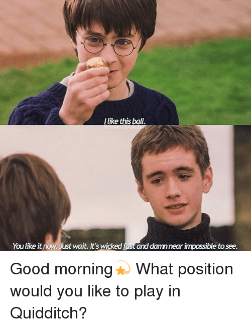 Quidditch: llike this ball  You like it now, Just wait. It's wicked fast and damn near impossible to see. Good morning💫 What position would you like to play in Quidditch?