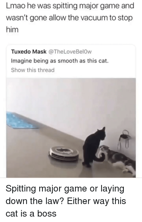 Funny, Lmao, and Smooth: Lmao he was spitting major game and  wasn't gone allow the vacuum to stop  him  Tuxedo Mask @TheLoveBelOw  Imagine being as smooth as this cat.  Show this thread Spitting major game or laying down the law? Either way this cat is a boss