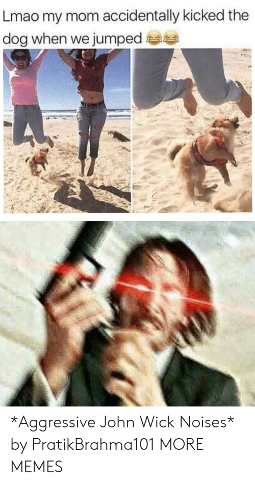 Dank, John Wick, and Lmao: Lmao my mom accidentally kicked the  dog when we jumped *Aggressive John Wick Noises* by PratikBrahma101 MORE MEMES