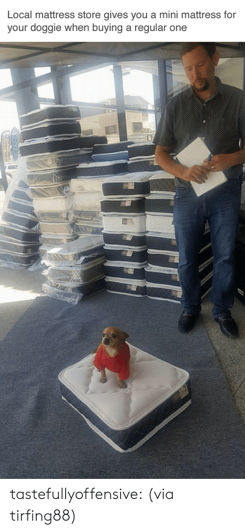 Locale: Local mattress store gives you a mini mattress for  your doggie when buying a regular one tastefullyoffensive:  (via tirfing88)