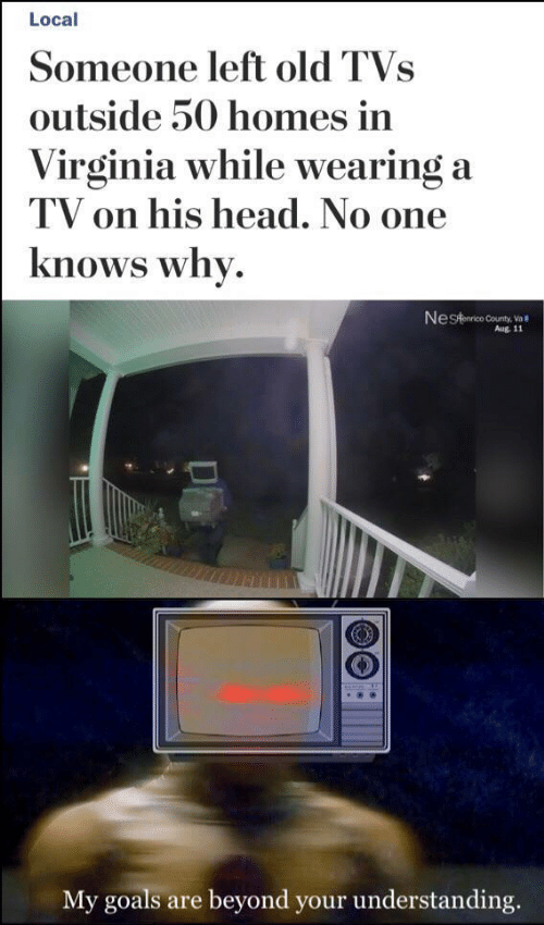 Goals, Head, and Virginia: Local  Someone left old TVs  outside 50 homes in  Virginia while wearing a  TV on his head. No one  knows why.  Nestaarico County, Va  Aug. 11  My goals are beyond your understanding.