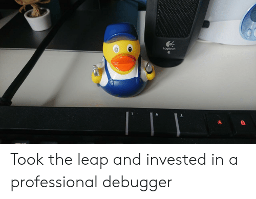 Professional,  Leap, and And: Logitech Took the leap and invested in a professional debugger