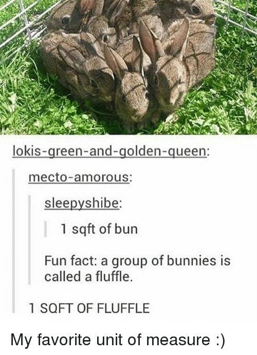 Shibes: lokis  reen-and-golden  queen:  mecto amorous:  slee  shibe  1 sqft of bun  Fun fact: a group of bunnies is  called a fluffle.  1 SQFT OF FLUFFLE My favorite unit of measure :)