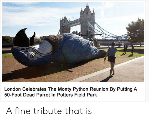 reunion: London Celebrates The Monty Python Reunion By Putting A  50-Foot Dead Parrot In Potters Field Park A fine tribute that is