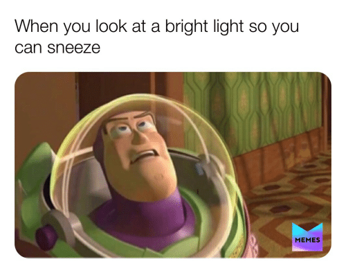 Memes, Light, and Can: look at a bright light so you  When  you  can sneeze  MEMES