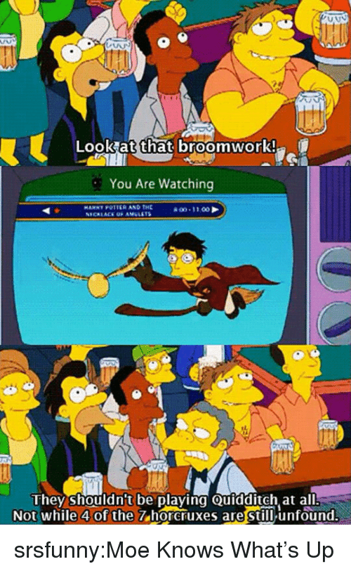Quidditch: Look at that broomwork!  You Are Watching  HAMNY POTTER AND THE  they shouldn't be playing Quidditch at all  Not while 4 of the  7 horcruxes are still unfound. srsfunny:Moe Knows What's Up