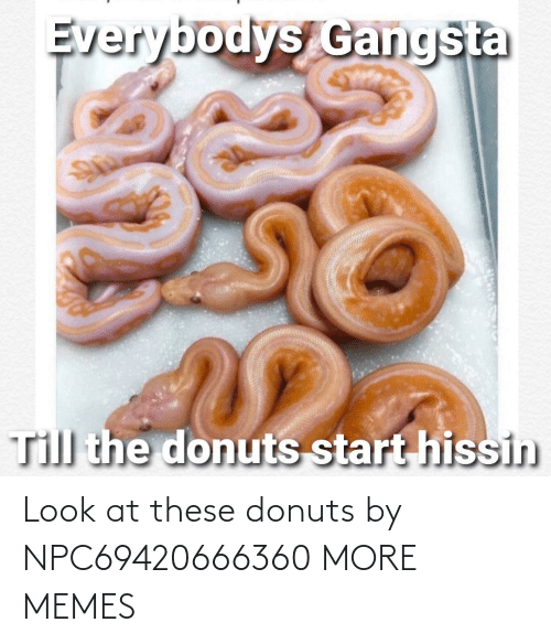 look: Look at these donuts by NPC69420666360 MORE MEMES
