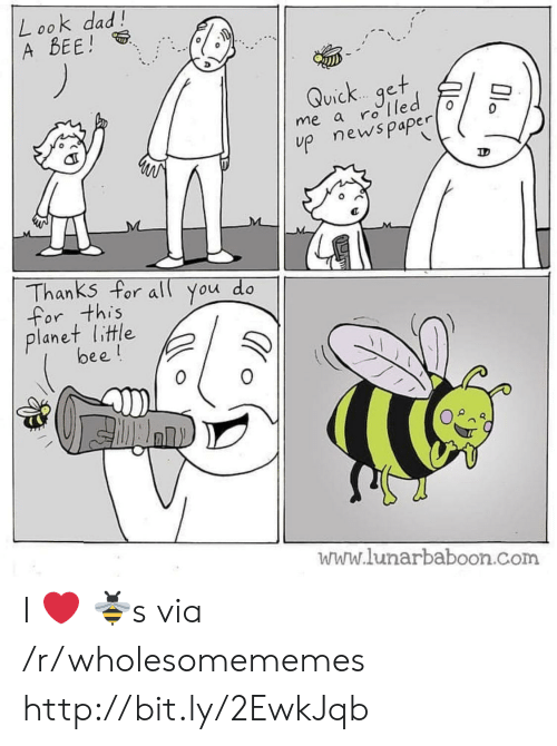 Look Dad: Look dad!  A BEE!  Quick get  me a rolled  p newspaper  Thanks for al You do  for this  planet little  bee!  www.lunarbaboon.com  Ola I ❤️ 🐝s via /r/wholesomememes http://bit.ly/2EwkJqb