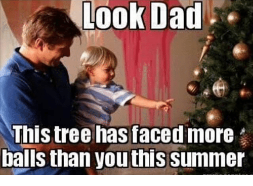 Look Dad: Look Dad  This tree has faced more  balls than youthis summer