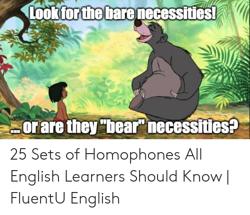 a6600363899 Bear, English, and All: Look for the barenecessities! orare they