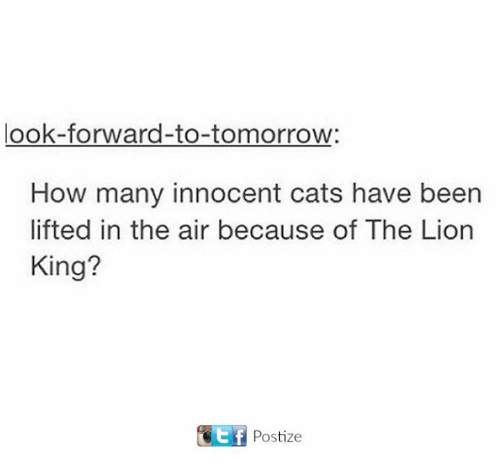 Cats, Memes, and The Lion King: look forward-to-tomorrow:  How many innocent cats have been  lifted in the air because of The Lion  King?  Ctf Postize