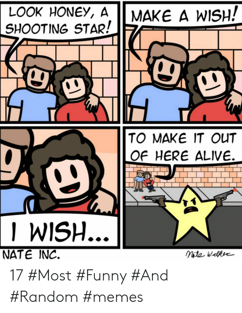 shooting star: LOOK HONEY, A  SHOOTING STAR!  MAKE A WISH!  TO MAKE IT OUT  OF HERE ALIVE.  I WISH  NATE INC. 17 #Most #Funny #And #Random #memes