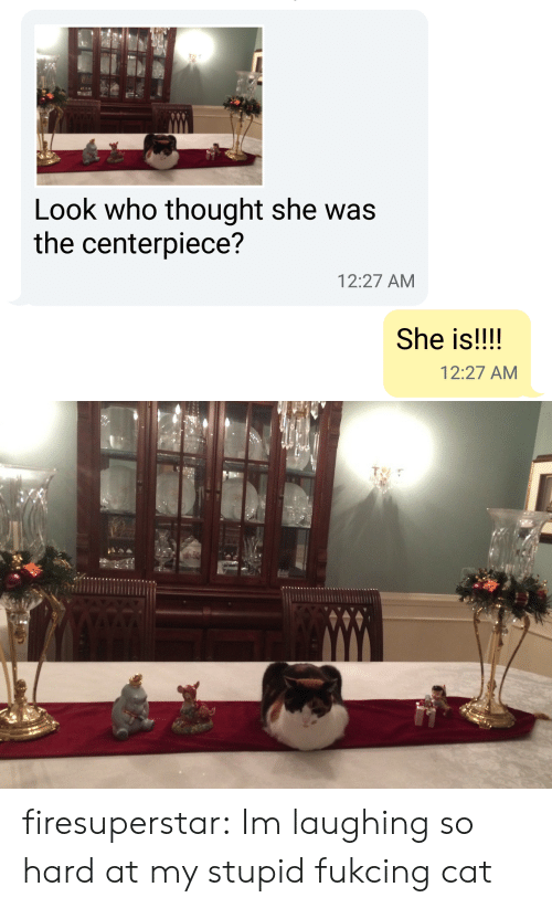 Im Laughing: Look who thought she was  the centerpiece?  12:27 AM  She is!!!!  12:27 AM firesuperstar:  Im laughing so hard at my stupid fukcing cat