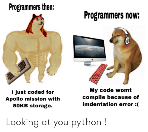 looking: Looking at you python !