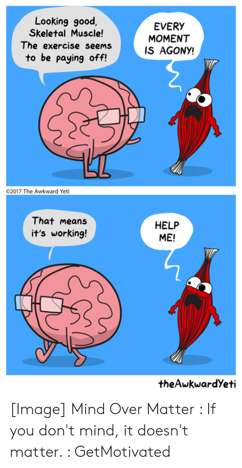 Awkward Yeti, Awkward, and Exercise: Looking good  Skeletal Muscle!  The exercise seems  EVERY  MOMENT  IS AGONY!  to be paying off!  2017 The Awkward Yeti  That means  HELP  ME!  it's working!  theAwkwardYeti [Image] Mind Over Matter : If you don't mind, it doesn't matter. : GetMotivated