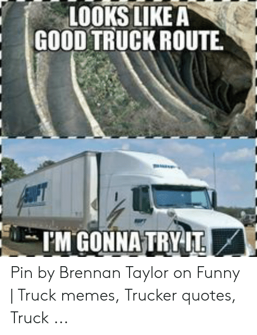 25 Best Memes About Trucker Quotes Trucker Quotes Memes