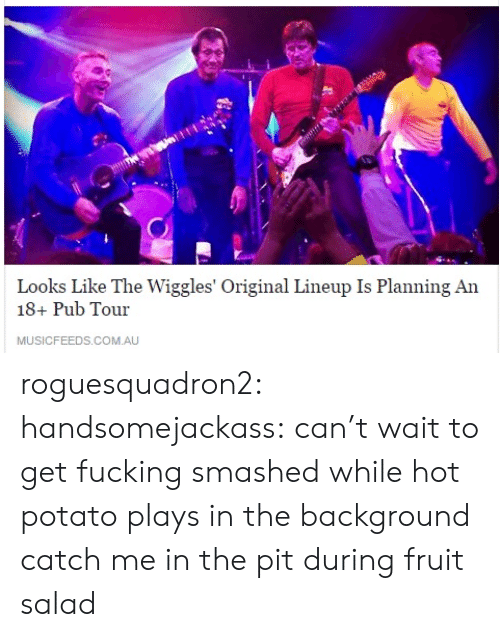 the wiggles: Looks Like The Wiggles' Original Lineup Is Planning An  18+ Pub Tour  MUSICFEEDS.COM.AU roguesquadron2:  handsomejackass:  can't wait to get fucking smashed while hot potato plays in the background  catch me in the pit during fruit salad