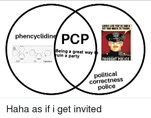 Party, Police, and Political Correctness: LOOKS LIKE YOU'VE HAD A  DIT TOO MUOH TO THINKI  phencyelding PCP  Being a great way t  uin a party  THOUGHT.POİ.IC  political  correctness  police