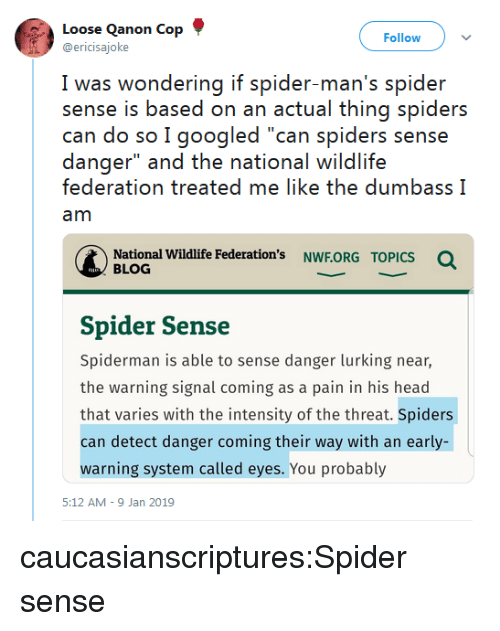 """intensity: Loose Qanon Cop  @ericisajoke  Follow  I was wwondering if spider man's spider  sense is based on an actual thing spiders  can do so I googled """"can spiders sense  danger"""" and the national wildlife  federation treated me like the dumbass I  am  National Wildlife Federation's NWF.ORG  Q  TOPICS  BLOG  Spider Sense  Spiderman is able to sense danger lurking near,  the warning signal coming as a pain in his head  that varies with the intensity of the threat. Spiders  can detect danger coming their way with an early-  warning system called eyes. You probably  5:12 AM-9 Jan 2019 caucasianscriptures:Spider sense"""