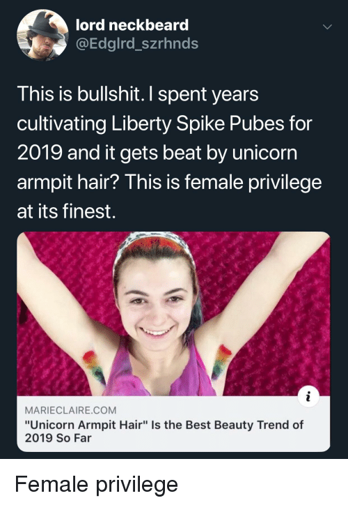 """Female Privilege: lord neckbeard  aEdgird_szrhnds  T his is bullshit. I spent years  cultivating Liberty Spike Pubes for  2019 and it gets beat by unicorn  armpit hair? This is female privilege  at its finest.  MARIECLAIRE.COM  """"Unicorn Armpit Hair"""" Is the Best Beauty Trend of  2019 So Far"""
