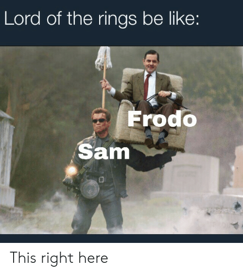 Lord of the Rings: Lord of the rings be like:  Frodo  Sam This right here