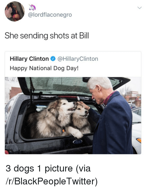 Dog Day: @lordflaconegro  She sending shots at Bill  Hillary Clinton @HillaryClinton  Happy National Dog Day! <p>3 dogs 1 picture (via /r/BlackPeopleTwitter)</p>