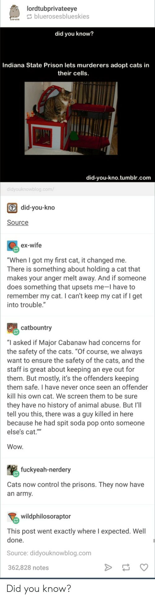 """Cats, Pop, and Soda: lordtubprivateeye  bluerosesblueskies  did you know?  Indiana State Prison lets murderers adopt cats in  their cells  did-you-kno.tumblr.com  did-you-kno  Source  ex-wife  """"When I got my first cat, it changed me.  There is something about holding a cat that  makes your anger melt away. And if someone  does something that upsets me-I have to  remember my cat. I can't keep my cat if I get  into trouble.""""  catbountry  """"I asked if Major Cabanaw had concerns for  the safety of the cats. """"Of course, we always  want to ensure the safety of the cats, and the  staff is great about keeping an eye out for  them. But mostly, it's the offenders keeping  them safe. I have never once seen an offender  kill his own cat. We screen them to be sure  they have no history of animal abuse. But I'lI  tell you this, there was a guy killed in here  because he had spit soda pop onto someone  else's cat.""""  Wow  fuckyeah-nerdery  Cats now control the prisons. They now have  an army  wildphilosoraptor  This post went exactly where I expected. Well  done.  Source: didyouknowblog.com  362,828 notes Did you know?"""