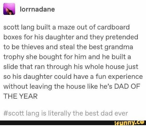 trophy: lorrnadane  scott lang built a maze out of cardboard  boxes for his daughter and they pretended  to be thieves and steal the best grandma  trophy she bought for him and he built a  slide that ran through his whole house just  so his daughter could have a fun experience  without leaving the house like he's DAD OF  THE YEAR  #scott lang is literally the best dad ever  ifunny.co