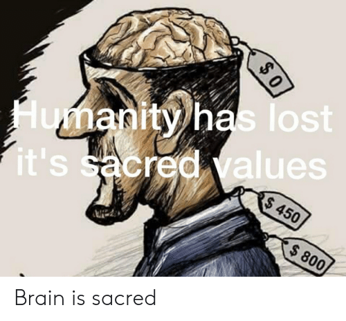 Lost, Brain, and Im 14 & This Is Deep: lost  an  alues  A450  800 Brain is sacred